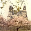 Central Park West Building in Spring Enhanced