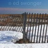 Winter Dune Fence