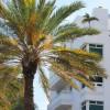 Fort Lauderdale Deco