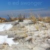 Lido Beach Dune in WInter