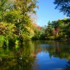 Old Westbury Gardens Pond