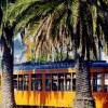 Market Street Trolley