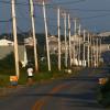 Telephone Poles, Truro