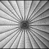 Decorative Ceiling Pattern - Black & White