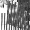 Dune Fences - Black & White