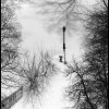 Lamppost in Snow - Black & White