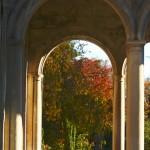 Archway Columns