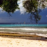 Barbados Beach with Sailboat