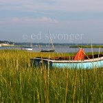 Blue Boat and Reeds