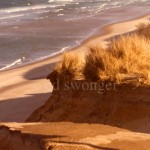 Cape Cod Sand Cliffs and Beach Below
