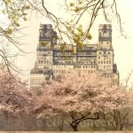 Central Park West Building in Spring
