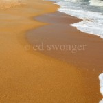 Flagler Beach Sand