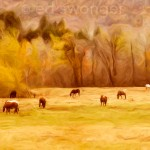 Catskill Horses in Fall Enhanced