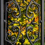 Old Westbury Gardens Gate and Fall Leaves