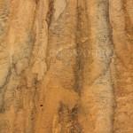Sand Pattern, Truro