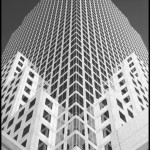 World Financial Center - Black & White
